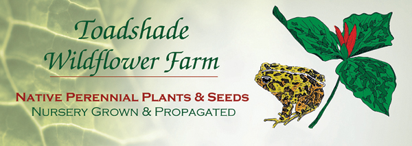 Online Plant & Seed Catalog